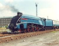 4498 <I>Sir Nigel Gresley</I> with the empty stock of <I>The North Yorkshireman</I> in the goods yard outside Bradford Forster Square station in July 1981.<br><br>[David Pesterfield&nbsp;07/07/1981]