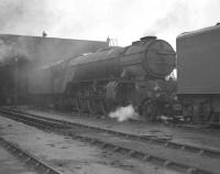 A2 Pacific no 60502 <I>Earl Marischal</I> stands on Kings Cross shed around 1959, no doubt ready to work an ECML service back to its home depot of York. Note the mini smoke deflectors fitted to this locomotive.<br> <br><br>[Robin Barbour Collection (Courtesy Bruce McCartney)&nbsp;//1959]