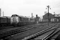 A reasonable selection of tracton on Ferryhill MPD in January 1973. Class 25 no 5227 is nearest the camera with Class 47, 24 and Swindon Cross Country units in evidence.<br><br>[John McIntyre&nbsp;/01/1973]