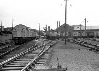 With the remains of the coaling bank on the left and Ferryhill's main shed to the right, this view is along the refuelling road during the early summer of 1974. Looks like a full house with so many locomotives stabled in the shed yard.<br><br>[John McIntyre&nbsp;//1974]