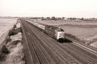 Deltic 55002 <I>The King's Own Yorkshire Light Infantry</I> at the head of an up ECML train passing the Edinburgh - London <I>half way</I> sign at Shipton, on the northern approach to York, on 16 August 1980<br> <br><br>[Peter Todd&nbsp;16/08/1980]
