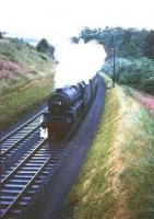 Kingmoor Black 5 no 45236 takes a northbound train through Drumlanrig Gorge, flanked by flowering Rosebay Willowherb, on a Summers day in the mid 1960s. <br><br>[Robin Barbour Collection (Courtesy Bruce McCartney)&nbsp;//]