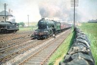 Haymarket A3 Pacific no 60057 <i>Ormonde</i> at Saughton Junction in June 1958 with the down <I>North Briton</I> passing V3 no 67608 with empty stock from Saughton carriage sidings.<br><br>[A Snapper (Courtesy Bruce McCartney)&nbsp;23/06/1958]