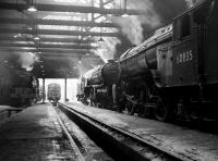 Inside St Margarets shed in April 1965. Resident V2s 60955 and 60835 stand on the right, with A1 Pacific no 60145 <I>Saint Mungo</I>, a visitor from York, on the left. [See image 27075] <br><br>[Robin Barbour Collection (Courtesy Bruce McCartney)&nbsp;16/04/1965]