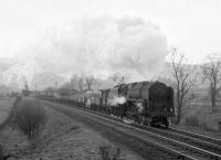 Standard class 9F 2-10-0 no 92019 and banker ascending Beattock with a freight near the site of the long closed Auchencastle station heading towards Greskine circa April 1965. The banker in this case is thought to be Beattock shed's 80045 [see image 27908].<br><br>[Robin Barbour Collection (Courtesy Bruce McCartney)&nbsp;/04/1965]