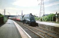 60004 <I>William Whitelaw</I> with the up <I>Talisman</I> passing through Joppa on 6 July 1959.<br> <br><br>[A Snapper (Courtesy Bruce McCartney)&nbsp;06/07/1959]