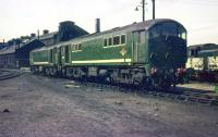 Metrovick diesels D5709+D5705 stand in the yard at Polmadie on 16 May 1959, having brought in the overnight Hendon-Gushetfaults <I>Condor</I> freight service.<br> <br><br>[A Snapper (Courtesy Bruce McCartney)&nbsp;16/05/1959]