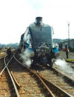 4498 <I>Sir Nigel Gresley</I> photographed in the goods yard near Bradford Forster Square on 7 July 1981 prior to working the return <I>North Yorkshireman</I> special.<br><br>[David Pesterfield&nbsp;07/07/1981]