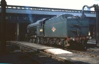 Gresley V2 2-6-2 no 60923 on shed at Eastfield in May 1959.<br><br>[A Snapper (Courtesy Bruce McCartney)&nbsp;23/05/1959]