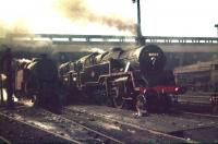 BR Standard class 4 2-6-4T no 80003 stands alongside a number of other locomotives  in the busy shed yard at Polmadie in May 1959. [Editors note: The hazy atmosphere and angle of the sun seem to have conspired to produce an image reminiscent of a Terence Cuneo painting!]<br><br>[A Snapper (Courtesy Bruce McCartney)&nbsp;16/05/1959]