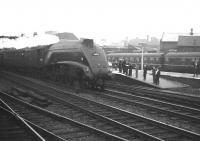 The <I>after school brigade</I> gathers at the south end of Doncaster station on a dull and damp afternoon in the 1960s as A4 no 60032 <I>Gannet</I> takes the up through line with a non-stop service heading for Kings Cross.  <br><br>[K A Gray&nbsp;//]