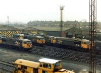 Class 56 freight locomotives rest on Knottingley TMD on 26 February 1983 following a week of hard work. On shed on this particular Saturday can be seen large logo examples 56092, 56115, 56093 and 56110, plus 56081.<br><br>[David Pesterfield&nbsp;26/02/1983]