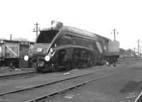 60019 <I>Bittern</I> being serviced on shed at Ferryhill in September 1966 after bringing in a special from Glasgow.<br><br>[Colin Miller&nbsp;03/09/1966]