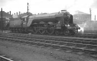 <I>Never looked quite right somehow...! </I> 60097 Humorist, the only A3 fitted with large smoke deflectors, stands at the south end of Doncaster shed in February 1962.<br><br>[K A Gray&nbsp;18/02/1962]