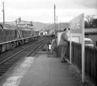 Following its arrival from Aberdeen via Craigellachie on 25 March 1967 behind D5070+D5127, the 18-coach <I>Grand Scottish Tour No 1</I> was given further assistance for the return journey to Perth by the addition of a third locomotive, no D5122. The trio is seen here at  Aviemore at around 18.30 prior to heading south. Full details of the tour, together with timings logged by John Robin that day, appear on the SBJ website. [With additional thanks to John McIntyre] [See image 27770] <br> <br><br>[Robin Barbour Collection (Courtesy Bruce McCartney)&nbsp;25/03/1967]