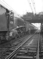 60019 <I>Bittern</I> after running round at Guide Bridge with <I>The Mancunian</I> railtour on 25 November 1967. The A4 then hauled the train tender-first to Stockport, before returning to Leeds via Manchester Victoria and Hebden Bridge.<br> <br><br>[Robin Barbour Collection (Courtesy Bruce McCartney)&nbsp;25/11/1967]