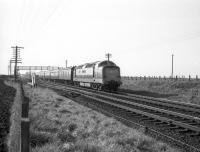 An up service passing Drem Junction on the ECML behind a Deltic in the 1960s. Train 2N83 is the 1420 Edinburgh Waverley - Newcastle Central, not a usual turn for a Deltic, which is thought to be running in or covering for a Type 4 failure in this case. [With thanks to Messrs Hillier, Rafferty, Watson, Mackie & Taylor]]  <br> <br><br>[Robin Barbour Collection (Courtesy Bruce McCartney)&nbsp;//1967]