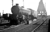 B1 no 61099 on shed at 62A Thornton Junction in the early 1960s. In the background beyond the coaling stage is <I>the snake pit</I> [see image 23695]<br><br>[K A Gray&nbsp;//]