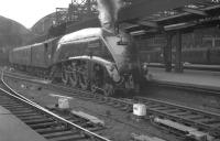 Gresley A4 Pacific no 60031 <I>Golden Plover</I> arrives at Newcastle Central in the 1960s with a train from Kings Cross.<br><br>[K A Gray&nbsp;//]