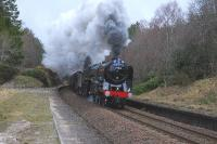Plenty of effort on display as Britannia Pacific 70013 <I> Oliver Cromwell </I> and 61994 <I>The Great Marquess </I> double head <I> The Great Britain III </I> through the closed station at Daviot on the climb from Culloden Viaduct to Moy on 13 April.<br><br>[John Gray&nbsp;13/04/2010]