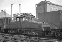 One of the pair of ES1 electric locomotives built to operate the Newcastle Quayside branch, no 26501, stands in the sidings alongside Heaton shed around 1960. Both locomotives were withdrawn in 1964 and, while this example was eventually scrapped, no 26500 happily survived and is currently housed in the NRM at Shildon. [See image 17307]<br><br>[K A Gray&nbsp;//1960]