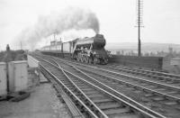 Haymarket A3 Pacific no 60035 <I>Windsor Lad</I> passes Tweedmouth signal box on 6 August 1957 and is about to run through Tweedmouth station with the up <I>Heart of Midlothian</I>. [Rescued image]<br> <br><br>[Robin Barbour Collection (Courtesy Bruce McCartney)&nbsp;06/08/1957]