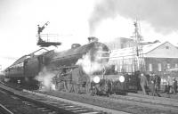 The BR (Scottish Region) <I>Last B1 Excursion</I> stands at Kilmarnock on 3 December 1966 behind 61278. The train travelled from here to Carlisle on the G&SW, returning to Edinburgh via the Waverley route.<br><br>[K A Gray&nbsp;03/12/1966]