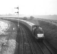 Clayton no 8579 approaches Niddrie West Junction from Niddrie North in February 1970 with Edinburgh area trip working E18 carrying grain from Leith South to Gorgie. Despite the rather primitive <I>Leith General Warehousing</I> wooden bodied stock, this must surely qualify as a block working! The trackbed of part of the Lothian Lines can be seen on the left.<br> <br> <br><br>[Bill Jamieson&nbsp;04/02/1970]