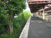 Dumbarton Central Station. The 'grew-some' abandoned through  platform looking east on 28 May. Three platforms remain in use here.<br><br>[Alistair MacKenzie&nbsp;28/05/2010]