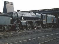 A visitor from Fort William in the shape of Black 5 no 44974 stands on Eastfield shed in May 1959. <br><br>[A Snapper (Courtesy Bruce McCartney)&nbsp;23/05/1959]