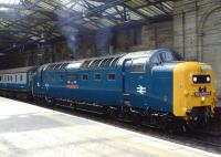 Deltic no 55022 <I>Royal Scots Grey</I> looking immaculate during a <I>Retro</I> railtour at Waverley on 31 May 2010.<br><br>[Brian Smith&nbsp;31/05/2010]