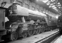 A3 no 60051 <I>Blink Bonny</I> photographed in the Pacific shed (originally part of the old tender shop) at Gateshead on 24 October 1964. The locomotive was withdrawn by BR the following month.<br><br>[Robin Barbour Collection (Courtesy Bruce McCartney)&nbsp;24/10/1964]