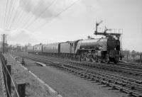 A1 Pacific no 60147 <I>North Eastern</I> leaves Drem in April 1964 with the 3.48pm (SO) Edinburgh Waverley - Berwick on Tweed stopping service. The train, which originated as a Corstorphine - Waverley ecs working [see image 25493], enabled the Pacific to return south, with a St Margarets locomotive arriving back in Edinburgh with the reverse working.<br><br>[Robin Barbour Collection (Courtesy Bruce McCartney)&nbsp;/04/1964]