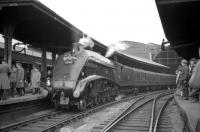 60009 <I>Union of South Africa</I> stands at Newcastle Central on 24 October 1964 following arrival from Kings Cross with the RCTS/SLS <I>Jubilee Requiem</I>. The special, which had arrived via the High Level Bridge, marked the end of A4 running on the London - Newcastle route. [See image 22334]<br><br>[Robin Barbour Collection (Courtesy Bruce McCartney)&nbsp;24/10/1964]