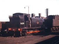 McIntosh 3F 0-6-0T no 56239 photographed in a corner of Polmadie shed in the autumn of 1959.<br><br>[A Snapper (Courtesy Bruce McCartney)&nbsp;26/09/1959]