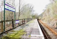 The lonely looking platform bench at Falls of Cruachan Station in April 2005. Loch Awe can be glimpsed below through the trees on the left.<br><br>[John Furnevel&nbsp;15/04/2005]