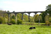 Leslie Viaduct from the south in May 2005 with the chimney of one of the last of the Leven Valley paper mills bisecting the central arch. <br><br>[John Furnevel&nbsp;01/05/2005]