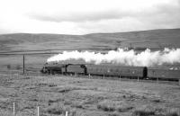 <I>Well, that's the worst over... </I> Thoughts of a fireman, as a Black 5 hurries north on the WCML in the 1960s with a parcels train, photographed shortly after passing Beattock summit.<br><br>[Robin Barbour collection (Courtesy Bruce McCartney)&nbsp;//]