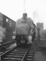 Gateshead A4 Pacific no 60023 <I>Golden Eagle</I> takes on water at its home shed on a grey, wet day in the early sixties.<br><br>[K A Gray&nbsp;//]