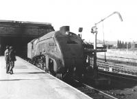 Gresley A4 Pacific no 60026 <I>Miles Beevor</I> stands at Perth station in August 1965 with the up 'west coast postal'. The locomotive was finally withdrawn from Ferryhill shed in December that year. <br><br>[Jim Peebles&nbsp;/08/1965]
