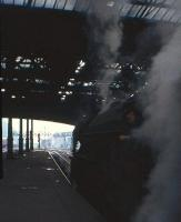 The distinctive smoke deflector stands out from the gloom in this 2nd May 1964 shot of an A1 simmering at the east end of Waverley waiting for the 'off'. <br> <br><br>[Frank Spaven Collection (Courtesy David Spaven)&nbsp;02/05/1964]