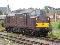 West Coast Railways no 37 516 awaits its next turn of duty at the south end of York on 29 July 2010.<br><br>[Mark Poustie&nbsp;29/07/2010]
