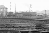 A box camera photograph from 1962 showing the view north across the tracks towards Greenlaw Goods, standing in the 'V' of the Paisley and Renfrew lines to the west of Arkleston Junction. The photograph is taken from the point where the south to west curve of the ill-fated Paisley and Barrhead route from Paisley East would have joined the main line. At this time the abutments of both bridges on the triangle over Greenlaw Drive and Barshaw Drive survived, as did the embankment carrying the planned south to east curve.<br><br>[Colin Miller&nbsp;//1962]