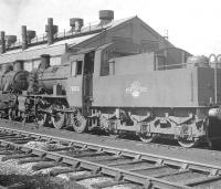 Shed scene at 89A Oswestry in 1963, featuring BR Standard 2-6-0 no 78000 and friend.<br><br>[K A Gray&nbsp;02/04/1963]