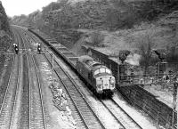 EE Type 3 37113 hauls a rake of open wagons westwards through  Horbury cutting heading for Healey Mills Yard. The loco later moved to Scotland and was named <I>Radio Highland</I> but after a further fourteen years service it ran away in Portobello Yard in 1995 and collided with a HST. Damage was such that it was cut up in the sidings there.<br><br>[Mark Bartlett&nbsp;05/12/1980]