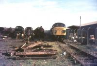 Scrapyard scene at Barry in July 1976.<br><br>[Ian Dinmore&nbsp;/07/1976]