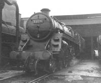 Standard Class 5 4-6-0 no 73109 on Eastfield shed in 1964.<br><br>[Jim Peebles&nbsp;//1964]