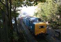 The <i>Ribble Lune Railtour</i> with Deltic 55022 leading is seen having left the Preston Docks system and crossed Strand Road LC, back on Network Rail tracks on the 1 in 30 climb back up to the mainline just south of Preston station on 10 October 2010. 55022 is about to enter Fishergate Hill tunnel on this curving and <br> steep section. 66066 on the rear was required to assist after the train came to a stand and 55022 was unable to get it moving again.<br> <br><br>[John McIntyre&nbsp;10/10/2010]