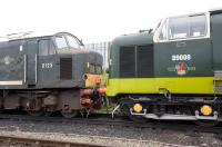 Peak D123 stands nose to nose with Deltic D9009 at Lougborough on 10 October.<br> <br><br>[Peter Todd&nbsp;10/10/2010]