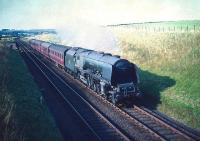 The 5.30pm St Enoch - Carlisle stopping train photographed south of Lugton on 22 August 1959. Locomotive is Stanier Pacific no  46223 <I>Princess Alice</I>. <br> <br><br>[A Snapper (Courtesy Bruce McCartney)&nbsp;22/08/1959]